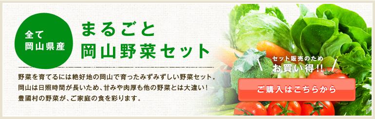 まるごと岡山野菜セット
