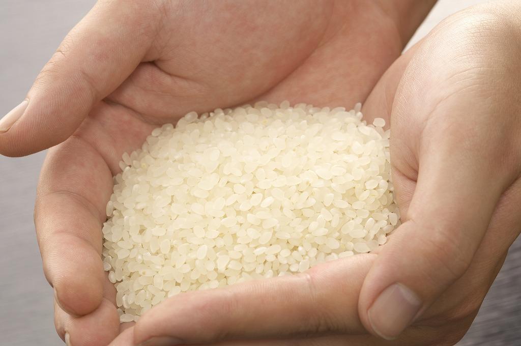 豊國村のお米が選ばれる理由